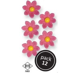 PME Pink Daisies